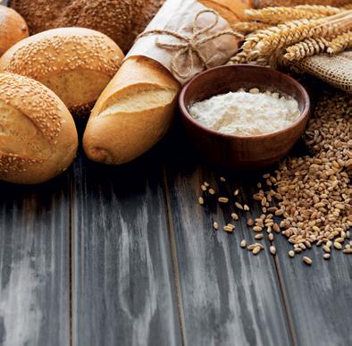 Quantité de fibres (en g) pour 100g de produits céréaliers