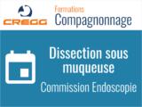 Dissection sous Muqueuse – Journée 2021 EST CREGG