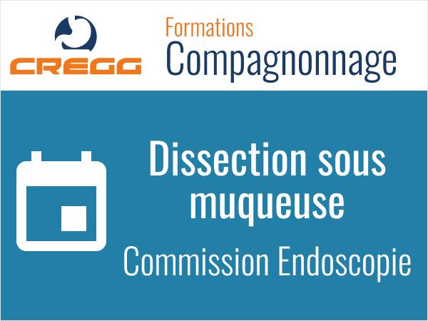 Endoscopie : Atelier de dissection sous muqueuse 2021